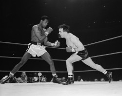 Robinson vs Fullmer